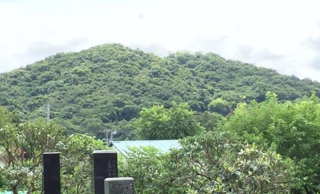 多気山城(多気城)