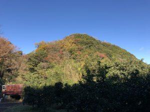 伊豆・丸山城