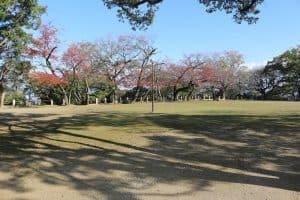 徳島城の本丸