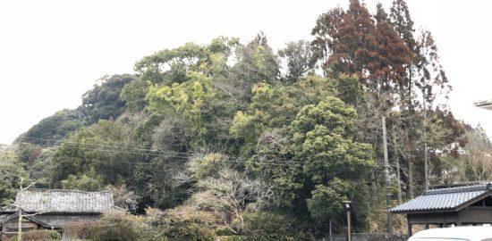 志布志城(内城)