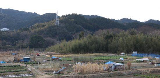 日向・井上城