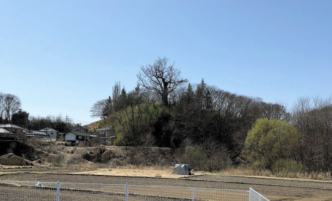 信濃・大井城