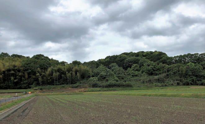 備中・茶臼山城