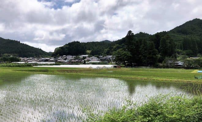 大和・菅野城(菅野谷城)