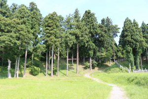 東城砦(春日砦)