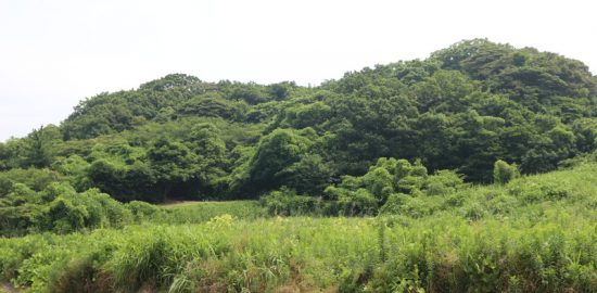 佐渡・相川城(羽田城)