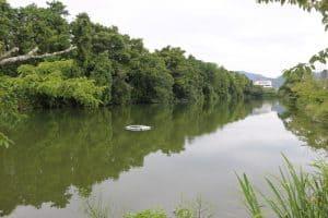 篠山城の水堀