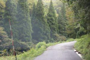 味土野女城への道のり