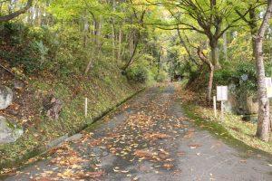 檜山安東氏城館跡