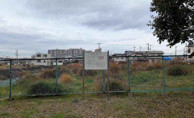 和泉・高井城