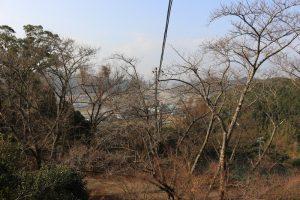 龍松山城からの展望