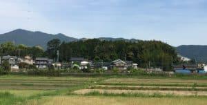 三河・野田城