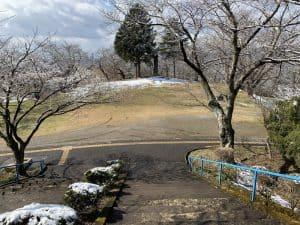 高水寺城(陸奥・郡山城)