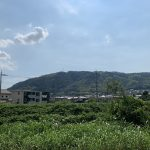 山城・山崎城