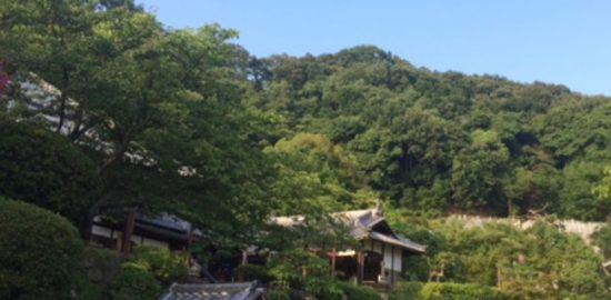 河内・野崎城