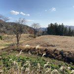 上野・深沢城
