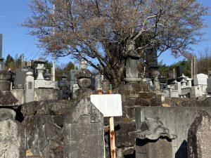 阿久沢氏累代の墓