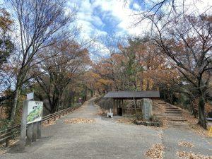 上野・金山城