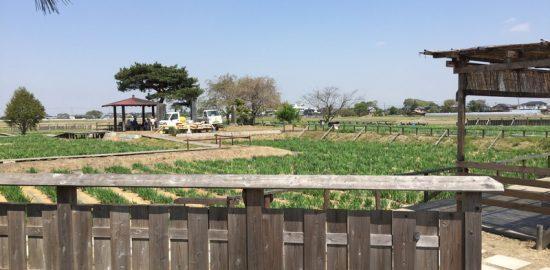 武蔵・菖蒲城