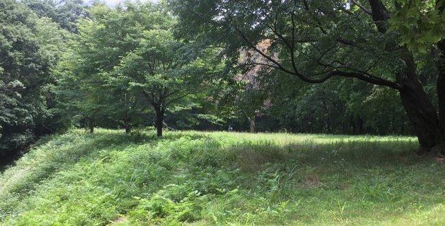 武蔵・小田野城