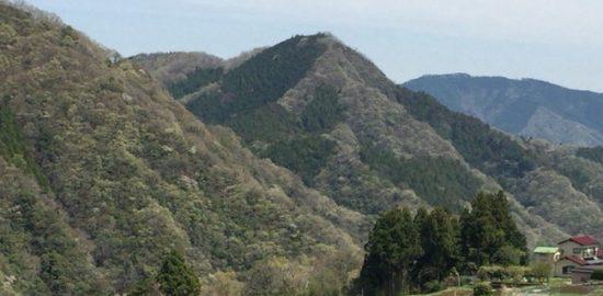 伏馬田城(尾崎城)
