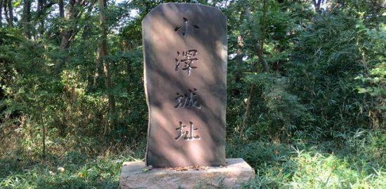 武蔵・小沢城