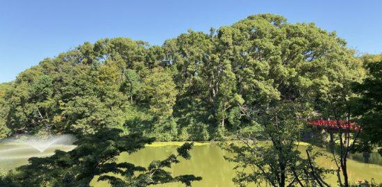 茶臼山(摂津・大塚城)