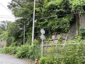 武蔵・矢上城