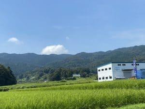 手葉井山城