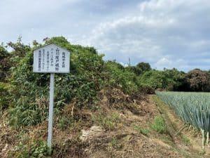 山川綾戸城