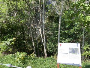 アフン・ル・パル洞穴