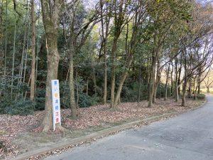 武蔵・三ツ木城