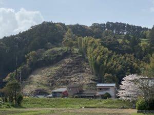 駿河・野田城