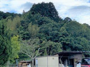 伊豆・田代砦