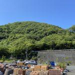 伊豆・鎌田城