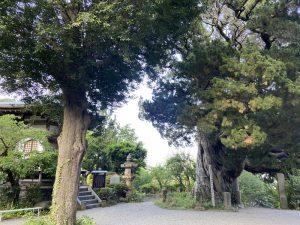 湯河原・城願寺