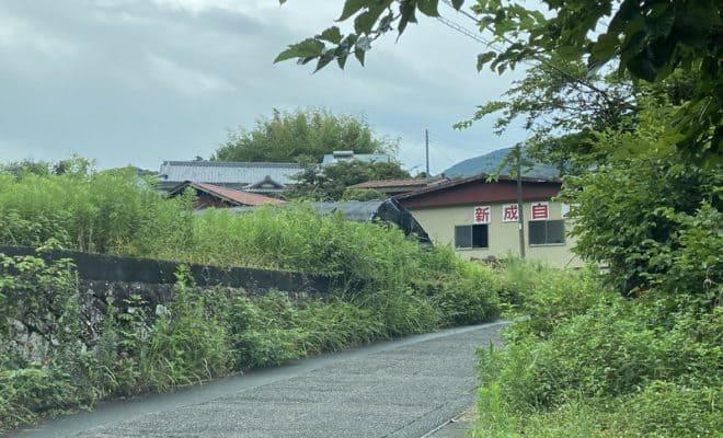 伊豆・清水氏館